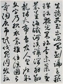 祝允明《草书千字文》09作品欣赏