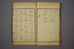 (清)杨守敬编楷法溯源卷二0025作品欣赏