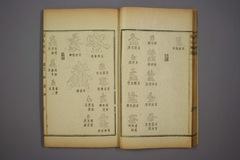 (清)杨守敬编楷法溯源卷十三0021作品欣赏