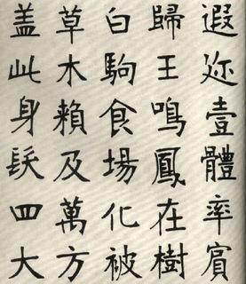 (清)张裕钊楷书千字文0005作品欣赏