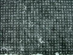魏碑《元延明墓志》0007作品欣赏