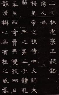 (北魏)楷隶_林虑哀王元文墓志0002作品欣赏