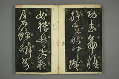 (唐)怀素草书秋兴八首(日延保版)0024作品欣赏