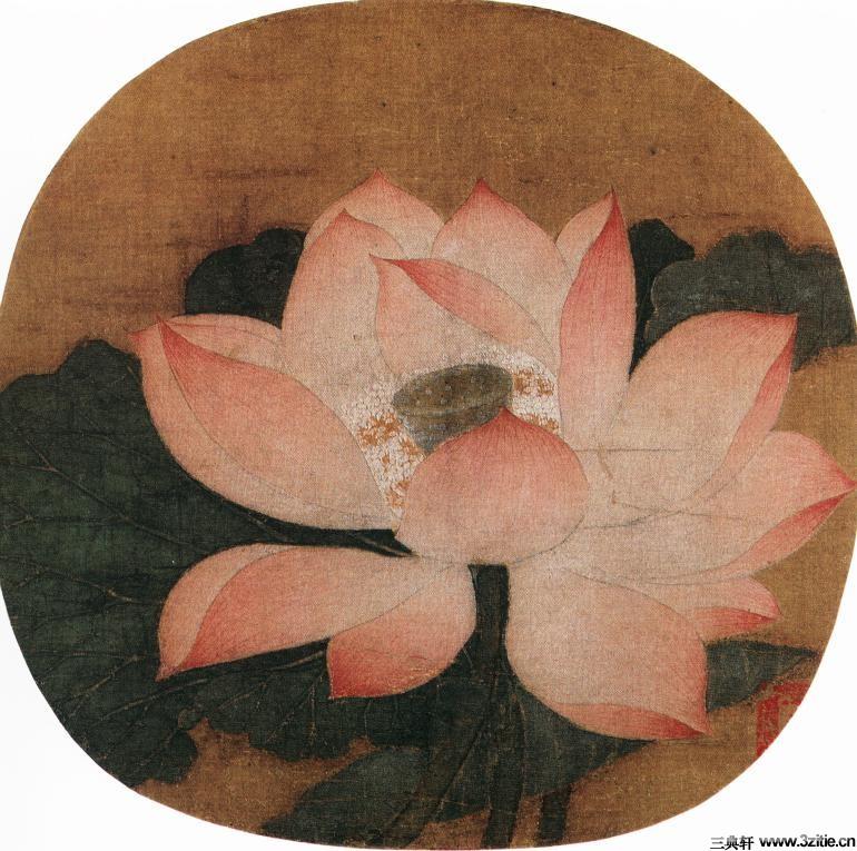 历代名家墨荷图欣赏0002作品欣赏
