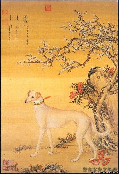 清郎世宁《十犬图》0003作品欣赏