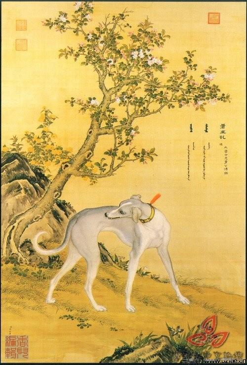 清郎世宁《十犬图》0005作品欣赏