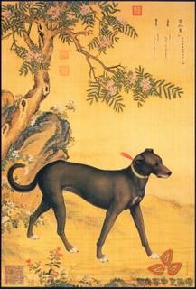 清郎世宁《十犬图》0002作品欣赏