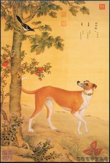 清郎世宁《十犬图》0007作品欣赏